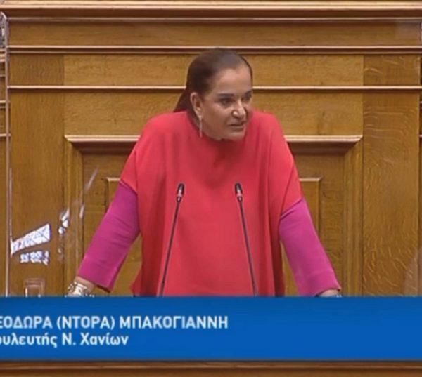 Ενημέρωση για τις προτεραιότητες της Ελληνικής Προεδρίας του Συμβουλίου της Ευρώπης